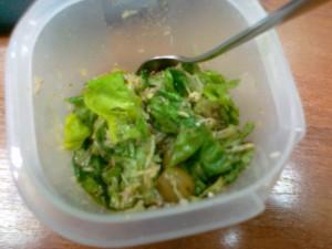 salata-sa-zelenom-salatom